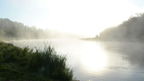Dense fog rise flow river water early morning sunrise sunlight. Dense fog rise from flow river water in early morning sunrise stock footage