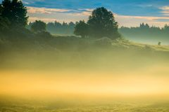 Dense fog at sunrise stock photo