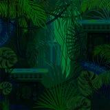 Dense foliage jungle nature background. Stock Photos