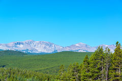 Dense Forest and Mountain Range stock image