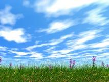 Dense grass Stock Photo