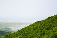 The dense green wood on a mountain slope, Azerbaijan Royalty Free Stock Image