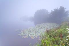 Dense mist over wild lake Stock Photo