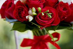 Dense red bouquet of roses, tied with a ribbon. Stock Photo
