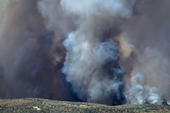 Dense White Smoke Rising from the Raging Wildfire Stock Photo