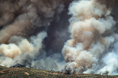 Dense White Smoke Rising from the Raging Wildfire Royalty Free Stock Photography