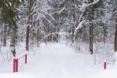 dentäckte vägen i vinterskog och öppnar porten på ingången Arkivbild