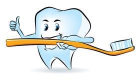 Dent avec la brosse à dents Photographie stock libre de droits