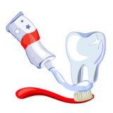Dent, brosse à dents, pâte dentifrice sur le fond blanc Image stock