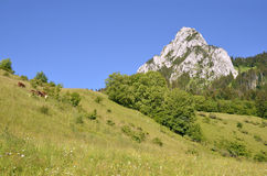 The Dent d'Oche mount in France Stock Photos
