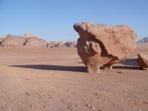 Dent dans le désert Photographie stock libre de droits