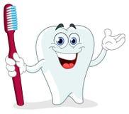 Dent de dessin animé avec la brosse à dents Image libre de droits