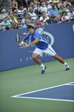Dent at US Open 2010 (6) Stock Photo