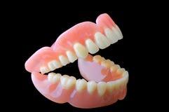Dentadura Fotografía de archivo libre de regalías