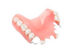 dentadura Foto de archivo