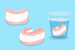 Dentadura de Cartoo Imagem de Stock