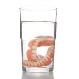 Dentadura en vidrio Imagen de archivo libre de regalías