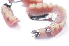 Dentadura parcial desprendible del metal del primer en el fondo blanco fotografía de archivo