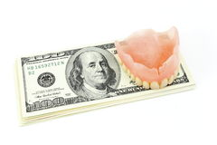 Dental artificial limb and dollars. On a white background royalty free stock images