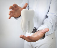 Dental care. Concept: molar tooth in man hands Stock Images