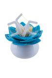Dental care in a support on white Stock Images