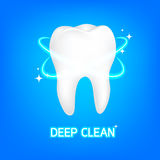 Dental care Tooth Concept. Stock Images