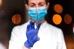 Dental and endodontic instruments in hands of dentist. The dentist women in blue gloves holding metal professional tools Stock Photos