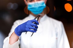 Dental and endodontic instruments in hands of dentist. The dentist women in blue gloves holding metal professional tools Stock Image