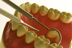 Dental exam Stock Images