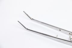 Dental forceps. Basic dental instrument called Forcep Royalty Free Stock Photo