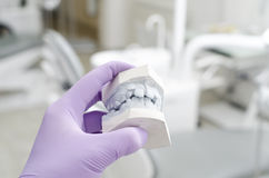 Dental Stock Photos