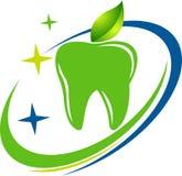 Dental herbal logo Stock Image