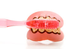 Dental Hygiene. Really dirty teeth and gums and a toothbrush Royalty Free Stock Photography