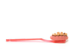 Dental Hygiene. Really dirty teeth and gums and a toothbrush Royalty Free Stock Photos