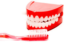 Dental Hygiene Royalty Free Stock Photo