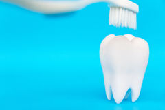 Dental Hygiene Concept royalty free stock photography