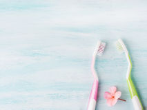 Dental hygiene concept. Toothbrushes, flowers, mint. Two pastel toothbrushes with pink flowers mint herb over green textured background. Spring colors. Personal stock images