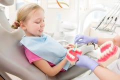 Dental hygiene. Dentist demonstrating tooth brushing Royalty Free Stock Photography