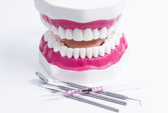 Dental. Image shows a set of iron instruments with set of teeth royalty free stock photo