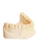 Dental impression 3. Dental impression isolated against white background Stock Photos