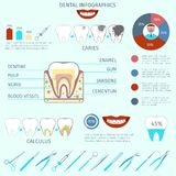 Dental infographics set. Dental care instruments infographics set with tooth and pie chart vector illustration Stock Photo