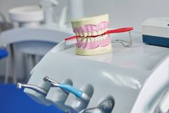 Dental jaw model. Dental care concept background royalty free stock photos