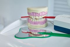 Dental jaw model. Dental care concept background stock photography