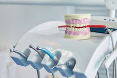 Dental jaw model. Dental care concept background royalty free stock photo