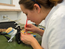 Dental Lab. Female dental technician working on a wax crown stock photo