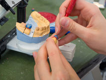 Dental Lab. Female dental technician working on a wax crown stock photography
