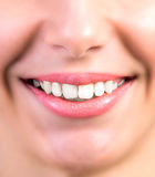 Dental medicine Royalty Free Stock Images