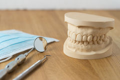 Dental mold with tools and a face mask. Dental mold showing the teeth of the upper and lower jaw with dental tools and a face mask on a wooden table in a dental Royalty Free Stock Image