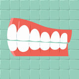 Dental. Oral hygiene background Flat design Stock Photo