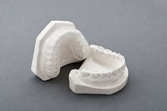 Dental plaster mold. Mold of  human teeth,white Plaster Royalty Free Stock Photography